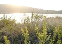Laghetto Gorgo area protetta lipu