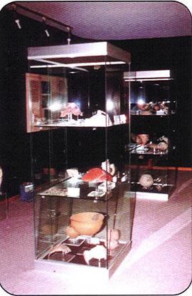 vetrine in esposizione