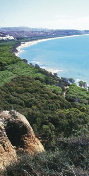 fotografia della costa di Eraclea Minoa