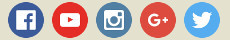 link ai social network
