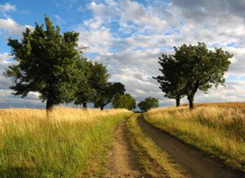 Ambiente, territorio Programmazione negoziata e Politiche comunitarie - Ufficio Europa SIT Protezione Civile